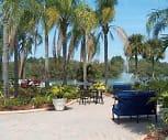 Lake Azzure, Northwest Tampa, Tampa, FL