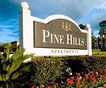 Main Image, Pine Hills