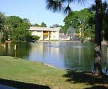 Tarponwood Lake, Tarpon Springs, FL