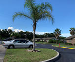 Palm Brook, Leesburg, FL