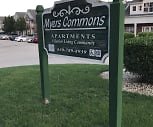 Myers Commons Apartments, 60561, IL