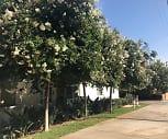 Osborne Gardens, 91331, CA