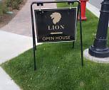 Lion, Wolcott, CO