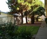 Edgemere Apartments, 79905, TX