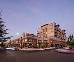 Harbor Heights - Active Adult Community, Washington Middle School, Olympia, WA