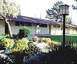 Exterior, Arbol Verde