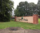 Cypress Trails, Northside High School, Lafayette, LA