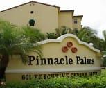 Main Image, Pinnacle Palms