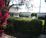 Main Image, Palmwood Garden Apartments