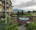 Trout Meadows At Cattail Lake, Bozeman, MT