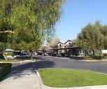 Valley Oak, Tulare, CA