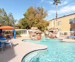 Pool, Flamingo Chateau