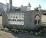 The Woodlands, 76120, TX