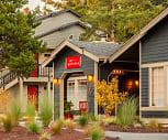 Artesia, Seattle Hill Silver Firs, Seattle, WA