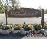 Timberlands, Southe Pointe Charter School Academy, Ypsilanti, MI