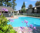 Spring Tree Apartments, Chino, CA