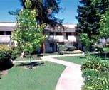 Daisy Ridge, Baylands Park, Sunnyvale, CA