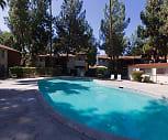 Pool, Cedar Tree II Apartments