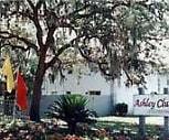 Ashley Club Apartments, New Tampa, Tampa, FL