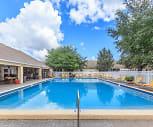 Pool, Hibiscus Springs