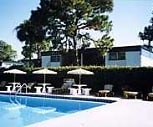 Town And Country Apartment Homes, 33615, FL