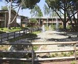 Oakridge Apartments, Cupertino, CA