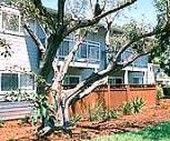Timberwood, 95111, CA