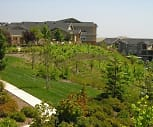 Vineyards at Valley View, El Dorado Hills, CA