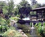 Willow Springs, Santa Clara Southwest, Santa Clara, CA