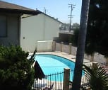Pool, Palm Villa