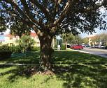 Villa Deste At Villagio Apartments, Fruitville, FL