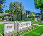 Olive West, Mountain View, CA