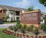 Photo, Sequoia Forum at Grand Prairie