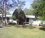 Live Oak Apartments, 33613, FL