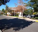 Apple Orchard, Eugene, OR