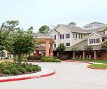 Paradise Springs, 77068, TX