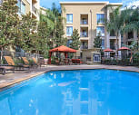 Pool, The Enclave At Warner Center Apartment Homes
