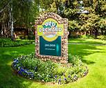 Old Orchard, Santa Clara, CA
