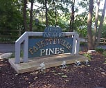Fayetteville Pines Townhouses, 13066, NY