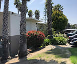 Capri, Boronda Meadows Elementary School, Salinas, CA