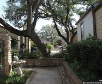 14414 Brook Hollow Blvd, Shady Oaks, San Antonio, TX