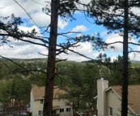 3024 S Oxbow Rd, Evergreen, CO