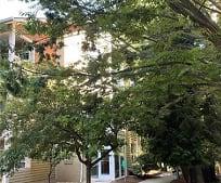 175 S Lexington Ave 301, F Delany New School For Children, Asheville, NC