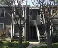 Building, 25423 Pine Creek Ln
