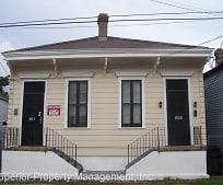 809 Harmony St, Irish Channel, New Orleans, LA