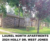 2924 Holly Dr, Mount Olive, MS