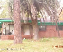 433 Alice Ave, Pelham, GA