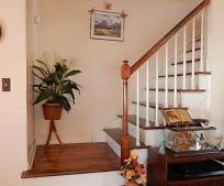 Living Room, 15 Garfield St