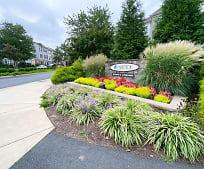 21847 Kelsey Square, Farmwell Station Middle School, Ashburn, VA