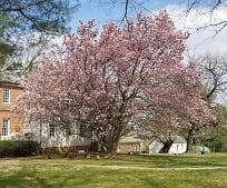 14820 Kelley Farm Dr, Darnestown, MD
